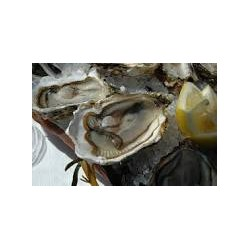 Huîtres de Bouzigues n°3-...